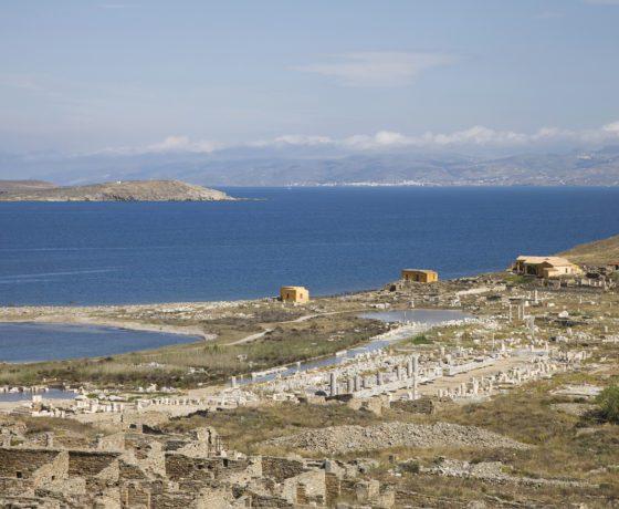 Tour dell'antica Delos da Mykonos